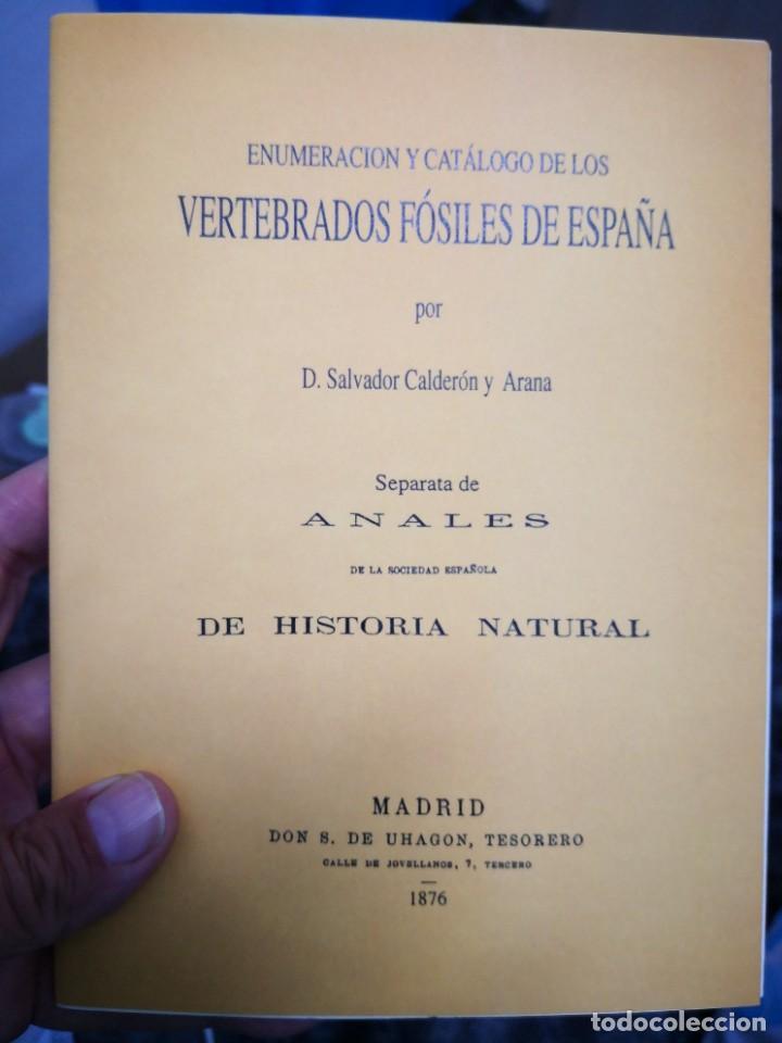 ENUMERACIÓN Y CATÁLOGO DE LOS VERTEBRADOS FÓSILES DE ESPAÑA.SALVADOR CALDERÓN Y ARANA 1876 FACSIMIL (Libros de Segunda Mano - Ciencias, Manuales y Oficios - Biología y Botánica)