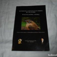 Libros de segunda mano: ESTUDIO DE LA AVIFAUNA EN EL PORREO DE VILLAVERDE.RIA DE VILLAVICIOSA ASTURIAS VARIOS AUTORES GIJON. Lote 218634803