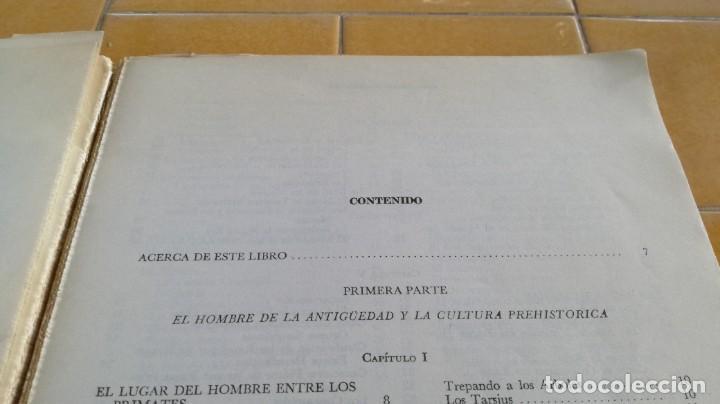 Libros de segunda mano: ANTROPOLOGIA SIMPLIFICADA - JOHN LEWIS - CIA GENERAL EDICIONES MEXICO X 102 - Foto 7 - 219890151