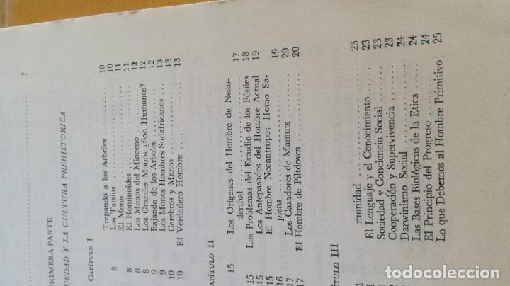 Libros de segunda mano: ANTROPOLOGIA SIMPLIFICADA - JOHN LEWIS - CIA GENERAL EDICIONES MEXICO X 102 - Foto 9 - 219890151