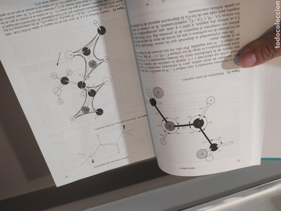 Libros de segunda mano de Ciencias: BIOQUÍMICA, BIOLOGÍA MOLECULAR Y BIOQUÍMICA FISIOLÓGICA. 2 VOLÚMENES. EMILIO HERRERA - McGRAW-HILL - Foto 9 - 220124780