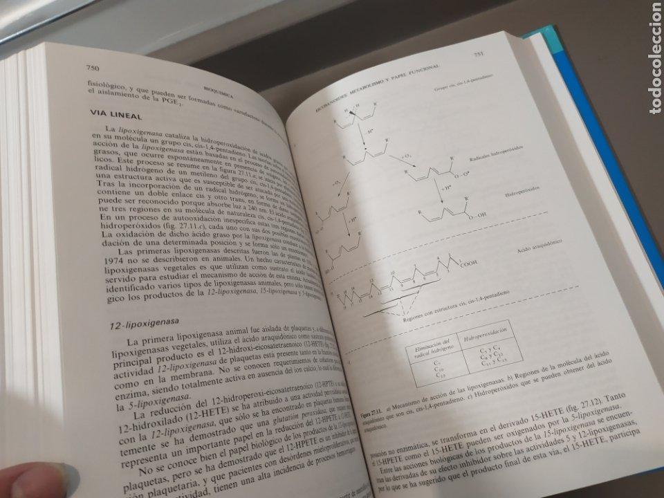 Libros de segunda mano de Ciencias: BIOQUÍMICA, BIOLOGÍA MOLECULAR Y BIOQUÍMICA FISIOLÓGICA. 2 VOLÚMENES. EMILIO HERRERA - McGRAW-HILL - Foto 12 - 220124780