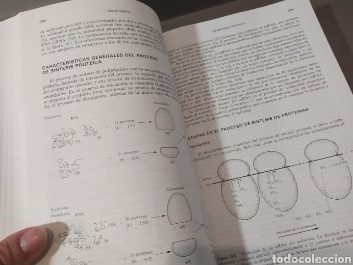 Libros de segunda mano de Ciencias: BIOQUÍMICA, BIOLOGÍA MOLECULAR Y BIOQUÍMICA FISIOLÓGICA. 2 VOLÚMENES. EMILIO HERRERA - McGRAW-HILL - Foto 20 - 220124780