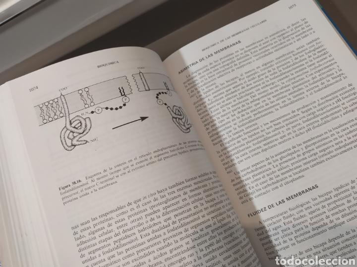 Libros de segunda mano de Ciencias: BIOQUÍMICA, BIOLOGÍA MOLECULAR Y BIOQUÍMICA FISIOLÓGICA. 2 VOLÚMENES. EMILIO HERRERA - McGRAW-HILL - Foto 21 - 220124780
