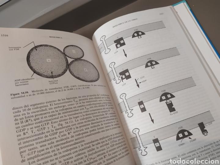 Libros de segunda mano de Ciencias: BIOQUÍMICA, BIOLOGÍA MOLECULAR Y BIOQUÍMICA FISIOLÓGICA. 2 VOLÚMENES. EMILIO HERRERA - McGRAW-HILL - Foto 24 - 220124780
