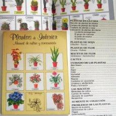 Libros de segunda mano: PLANTAS DE INTERIOR MANUAL DE CULTIVO Y CONSERVACIÓN - LIBRO GUÍA MACETAS CACTUS DECORACIÓN CUIDADOS. Lote 220555833
