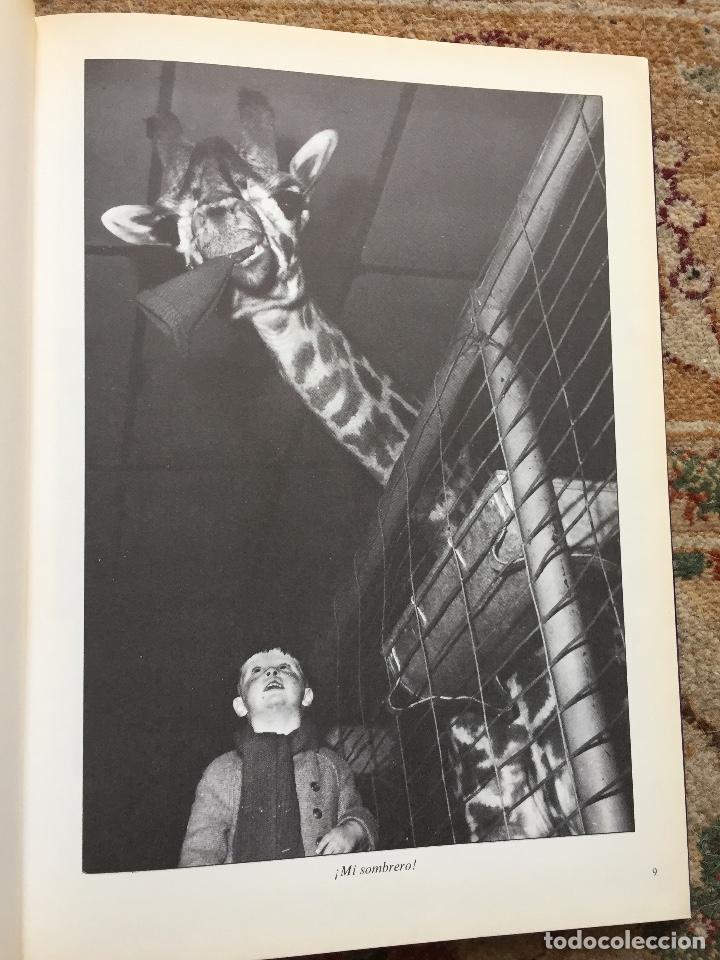 Libros de segunda mano: NOSOTROS...LOS ANIMALES. DE JACQUES BORGE-NICOLAS VIASNOFF. EDT EURO. 1976 - Foto 2 - 220577358