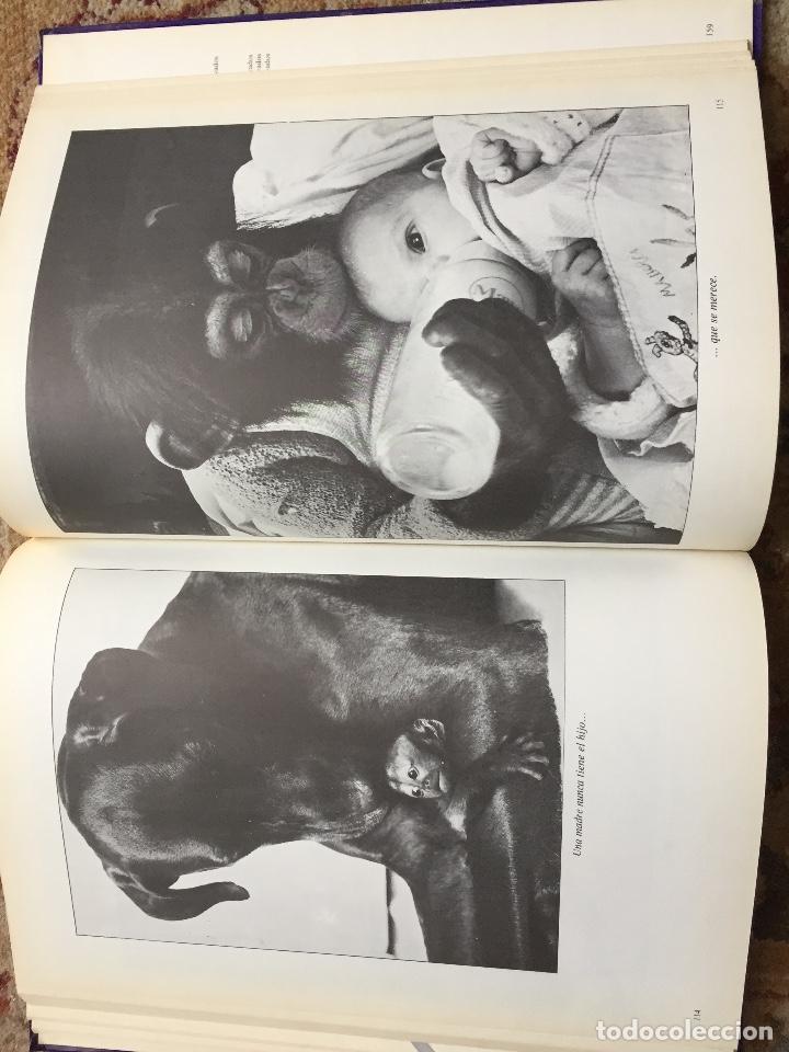 Libros de segunda mano: NOSOTROS...LOS ANIMALES. DE JACQUES BORGE-NICOLAS VIASNOFF. EDT EURO. 1976 - Foto 4 - 220577358
