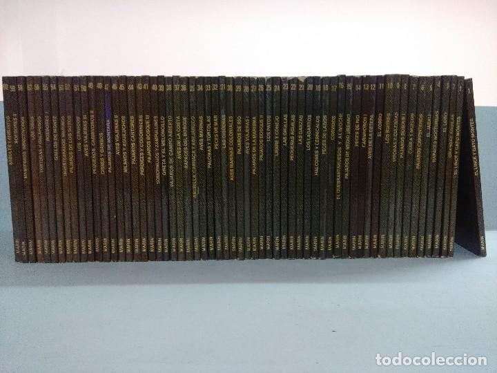 COLECCION CUADERNOS DE CAMPO FELIX RODRIGUEZ DE LA FUENTE A FALTA DEL NUMERO 42. (Libros de Segunda Mano - Ciencias, Manuales y Oficios - Biología y Botánica)