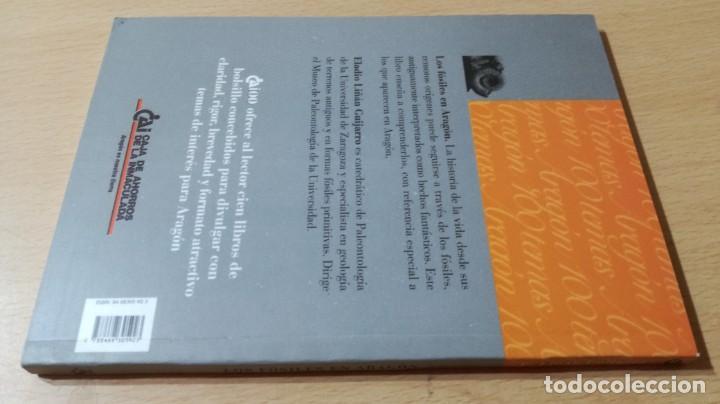 Libros de segunda mano: LOS FOSILES EN ARAGON / CAI 1OO ARAGON - COL - Foto 2 - 222249722