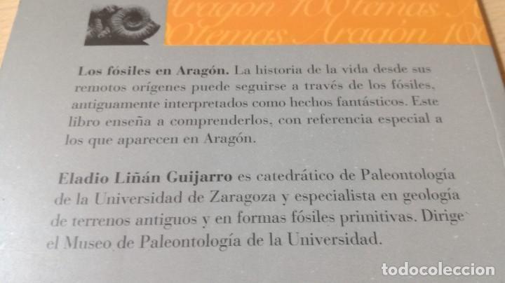 Libros de segunda mano: LOS FOSILES EN ARAGON / CAI 1OO ARAGON - COL - Foto 3 - 222249722