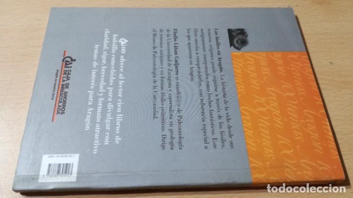 Libros de segunda mano: LOS FOSILES EN ARAGON / CAI 1OO ARAGON - COL - Foto 2 - 222265656