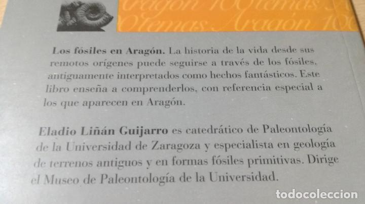 Libros de segunda mano: LOS FOSILES EN ARAGON / CAI 1OO ARAGON - COL - Foto 3 - 222265656