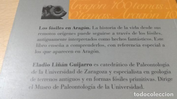 Libros de segunda mano: LOS FOSILES EN ARAGON / CAI 1OO ARAGON - COL - Foto 3 - 222268020