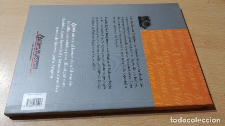 Libros de segunda mano: LOS FOSILES EN ARAGON / CAI 1OO ARAGON - COL - Foto 2 - 222297046