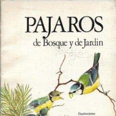 Libros de segunda mano: PÁJAROS DE BOSQUE Y JARDÍN, ALAN MITCHELL -ILUSTRADO POR TERENCE LAMBERT-. Lote 222368887