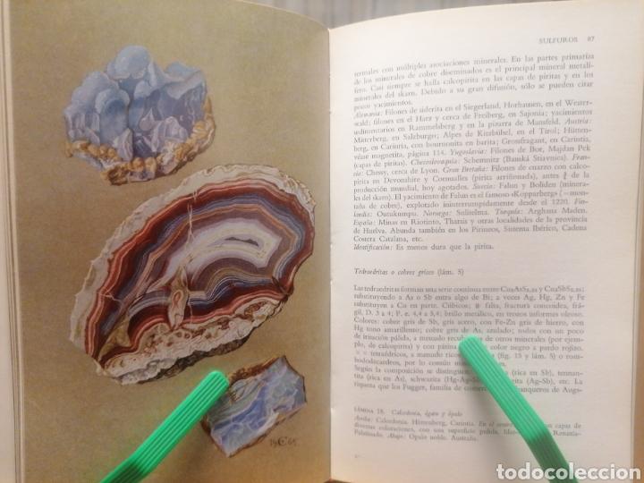 Libros de segunda mano: Los minerales. Hellmuth Bögel. Ed. Omega. Barcelona, 1977. - Foto 3 - 222690137