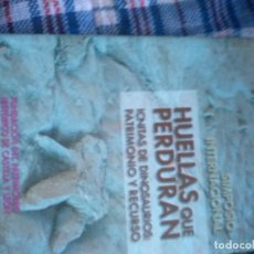 Libros de segunda mano: HUELLAS QUE PERDURAN: ICNITAS DE DINOSAURIOS: PATRIMONIO Y RECURSOS, FIDEL TORCIDA. Lote 222790505