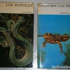 Libros de segunda mano: LOS ANFIBIOS Y LOS REPTILES 2T POR BELLAIRS Y PARKER DE ED. DESTINO EN BARCELONA 1975. Lote 223411587