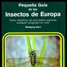 Libri di seconda mano: PEQUEÑA GUIA DE LOS INSECTOS DE EUROPA. COMO IDENTIFICAR LAS ESPECIES. WOLFGANG DIERL.. Lote 223997950