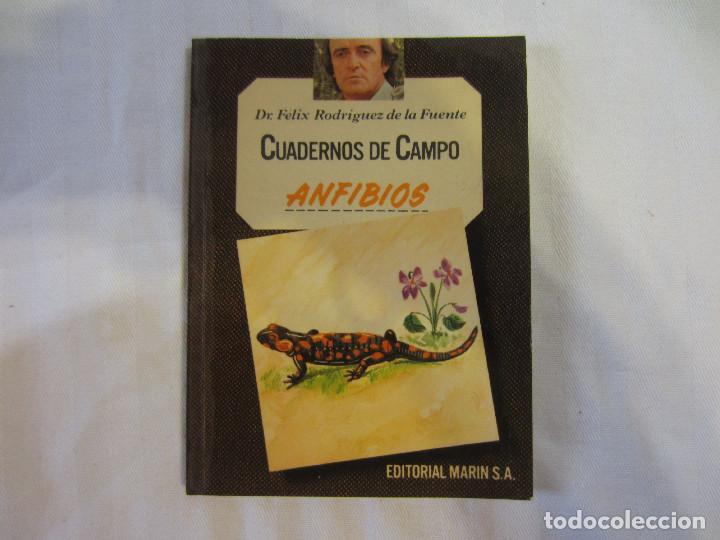 ANFIBIOS CUADERNOS DE CAMPO DE FELIX RODRIGUEZ DE LA FUENTE N 42 (ED. MARIN SA 1978) (Libros de Segunda Mano - Ciencias, Manuales y Oficios - Biología y Botánica)