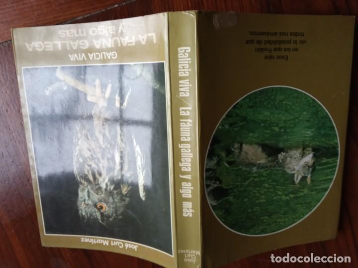 Libros de segunda mano: GALICIA VIVA. LA FAUNA GALLEGA Y ALGO MAS/ JOSE CURT MARTINEZ. - Foto 2 - 226845279