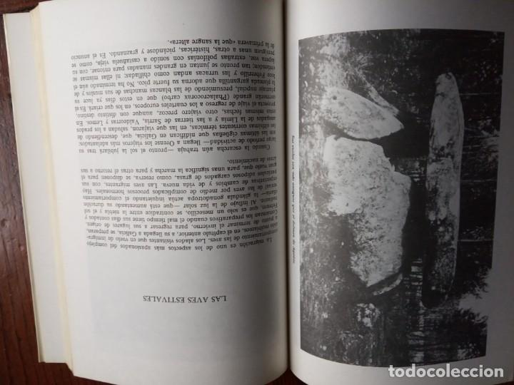 Libros de segunda mano: GALICIA VIVA. LA FAUNA GALLEGA Y ALGO MAS/ JOSE CURT MARTINEZ. - Foto 5 - 226845279