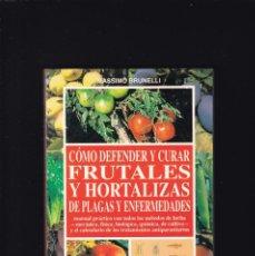 Livres d'occasion: CÓMO DEFENDER Y CURAR FRUTALES Y HORTALIZAS DE PLAGAS Y ENFERMEDADES - EDITORIAL DE VECCHI - 1998. Lote 228327677