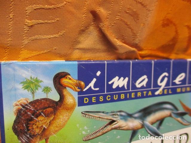 Libros de segunda mano: Dinosaurios Y Animales Desaparecidos (A partir de 10 años) - Gabriel Beaufay - Foto 2 - 263107325