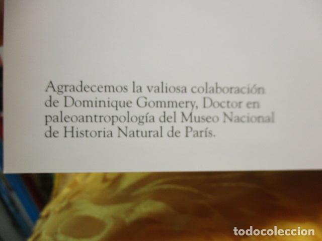 Libros de segunda mano: Dinosaurios Y Animales Desaparecidos (A partir de 10 años) - Gabriel Beaufay - Foto 7 - 263107325
