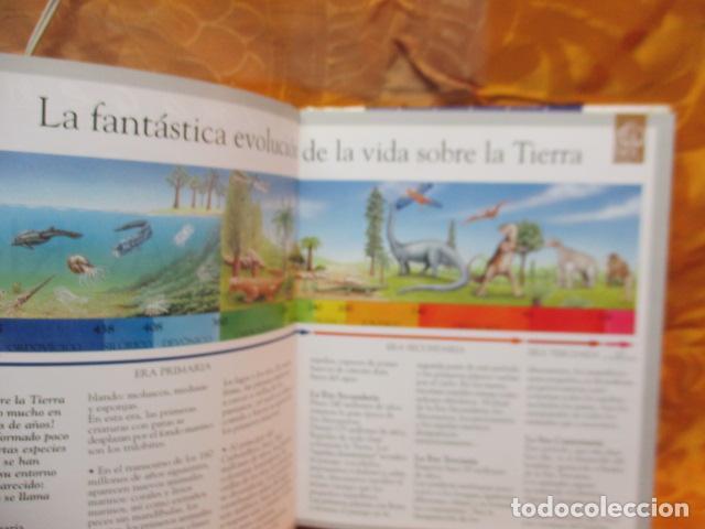 Libros de segunda mano: Dinosaurios Y Animales Desaparecidos (A partir de 10 años) - Gabriel Beaufay - Foto 9 - 263107325