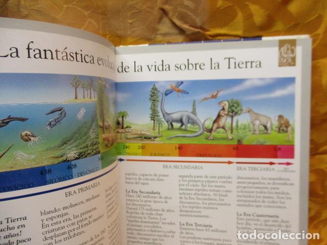 Libros de segunda mano: Dinosaurios Y Animales Desaparecidos (A partir de 10 años) - Gabriel Beaufay - Foto 10 - 263107325