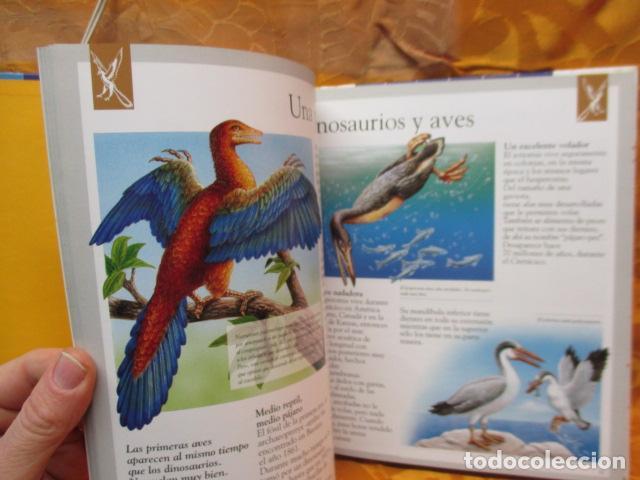 Libros de segunda mano: Dinosaurios Y Animales Desaparecidos (A partir de 10 años) - Gabriel Beaufay - Foto 13 - 263107325