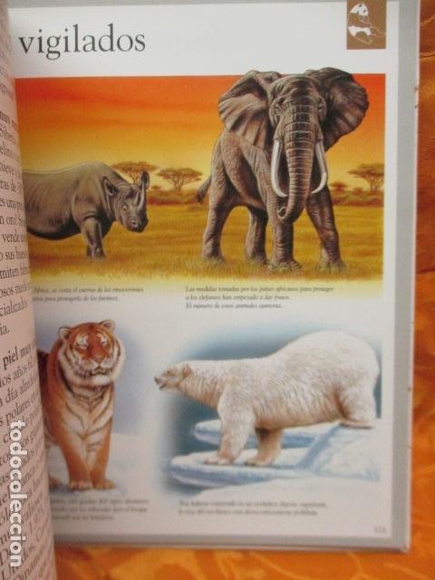 Libros de segunda mano: Dinosaurios Y Animales Desaparecidos (A partir de 10 años) - Gabriel Beaufay - Foto 16 - 263107325