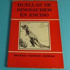 Libros de segunda mano: HUELLAS DE DINOSAURIOS EN ENCISO. LA RIOJA. RAFAEL BRANCAS. JORGE BLASCHKE. JULIO MARTÍNEZ. Lote 231149320