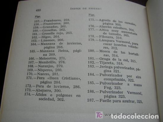 Libros de segunda mano: HORTICULTURA Y FRUTICULTURA-ROGELIO PEÑA-3ª. EDC.- JOSÉ MONTESÓ, EDT.- 1955-BAR.-VER FOTOS. - Foto 8 - 234917025