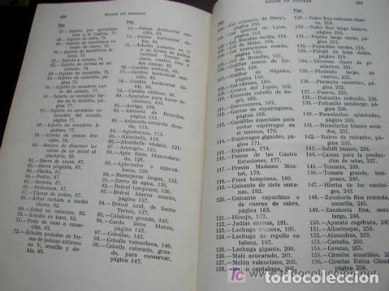 Libros de segunda mano: HORTICULTURA Y FRUTICULTURA-ROGELIO PEÑA-3ª. EDC.- JOSÉ MONTESÓ, EDT.- 1955-BAR.-VER FOTOS. - Foto 9 - 234917025