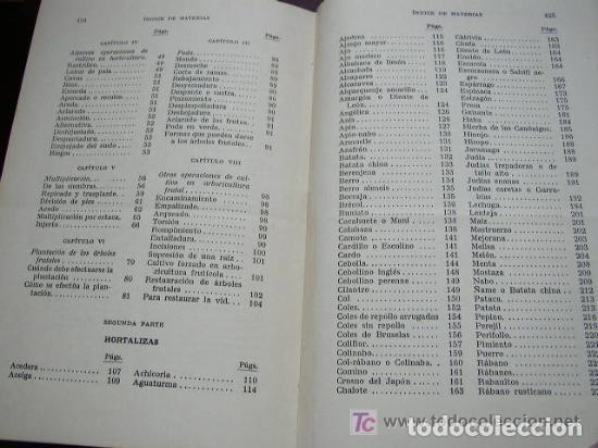 Libros de segunda mano: HORTICULTURA Y FRUTICULTURA-ROGELIO PEÑA-3ª. EDC.- JOSÉ MONTESÓ, EDT.- 1955-BAR.-VER FOTOS. - Foto 10 - 234917025