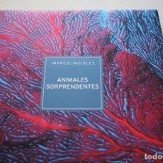 Libros de segunda mano: ANIMALES SORPRENDENTES. Lote 235256060
