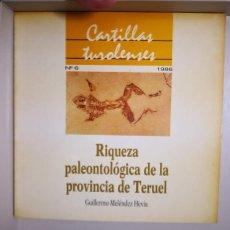 Libros de segunda mano: RIQUEZA PALEONTOLÓGICA DE LA PROVINCIA DE TERUEL -CARTILLAS TUROLENSES -GUILLERMO MELENDEZ HEBIA. Lote 235963465