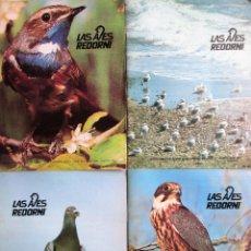 Libros de segunda mano: 4 REVISTAS LAS AVES REDORNI – NUMEROS 23, 24, 25, 26 1981-82 REVISTA BIMESTRAL DE DIVULGACION ORN. Lote 236149775