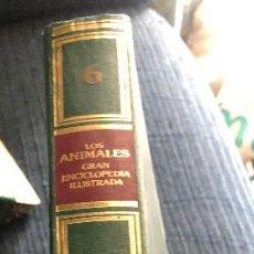 Libros de segunda mano: TAPAS PARA ENCUADERNAR. COLECCIÓN GRAN ENCICLOPEDIA DE LOS ANIMALES. TOMO 6: REPTILES.. Lote 236163755