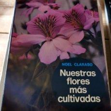 Libros de segunda mano: NUESTRAS FLORES MÁS CULTIVADAS. - CLARASÓ, NOEL.-1970, 241 PAGINAS. Lote 237065540