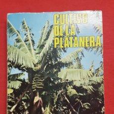 Libros de segunda mano: CULTIVO DE LA PLATANERA ,FRANCISCO JAVIER DE LA PEÑA,MINISTERIO DE AGRICULTURA, MADRID 1981. Lote 238740190