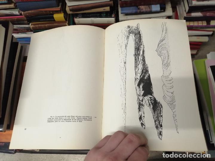 Libros de segunda mano: GEOMORFOLOGÍA DE MALLORCA . EL RELIEVE Y LA FORMA DE SUS MONTAÑAS . GUILLEM COLOM . 1982 - Foto 5 - 239796055