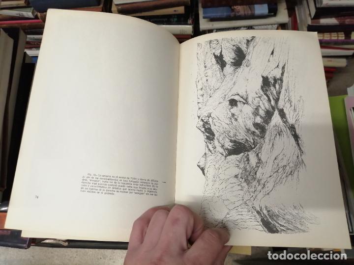 Libros de segunda mano: GEOMORFOLOGÍA DE MALLORCA . EL RELIEVE Y LA FORMA DE SUS MONTAÑAS . GUILLEM COLOM . 1982 - Foto 7 - 239796055