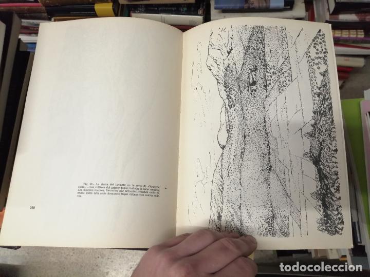 Libros de segunda mano: GEOMORFOLOGÍA DE MALLORCA . EL RELIEVE Y LA FORMA DE SUS MONTAÑAS . GUILLEM COLOM . 1982 - Foto 17 - 239796055