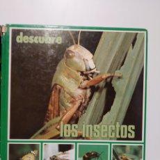 Libros de segunda mano: DESCUBRE LOS INSECTOS. EDITORIAL ORTELL. Lote 240975460