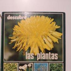 Libros de segunda mano: DESCUBRE LAS PLANTAS. EDITORIAL ORTELL. Lote 240975565