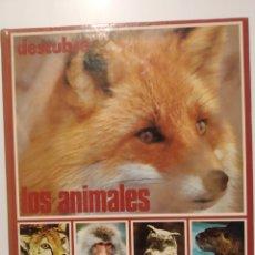 Libros de segunda mano: DESCUBRE LOS ANIMALES II. EDITORIAL ORTELL. Lote 240975715
